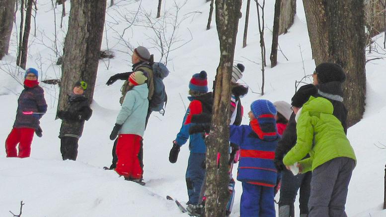 Photo : Audrey Bernier, Les élèves ont pu s'adonner à l'identification de pistes d'animaux sur la neige avec leur guide, Claude Bourque, biologiste.
