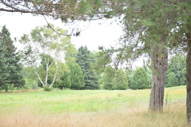 Photo : Félix Larose-Tarabulsy; L'ancien terrain de golf de Prévost. Plusieurs citoyens ont suggéré la réappropriation du terrain de golf afin de permettre une utilisation qui bénéficierait à toute la communauté.