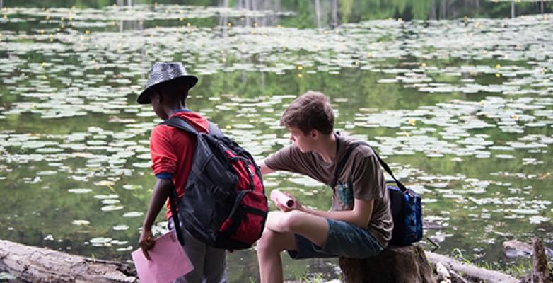 Au lac Paradis deux jeunes observent la grenouille verte