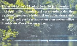 RDN-loi132