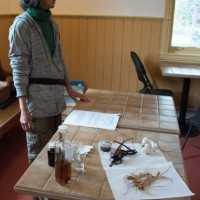 Danielle Trudeau, herboriste, donne une conférence sur les vertus des plantes médicinales