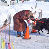 Les obstacles pour le chien et… pour son propriétaire! photo : Michel Fortier