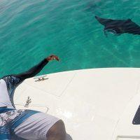 Fazeel Ibrahim  fait la raie Manta.  Atoll Ari Nord – Photo Ismail Sameer